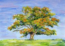 Como pintar arboles al oleo